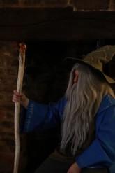 Merlin awaits his court